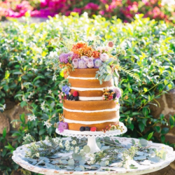 Naked cake with fruit and flowers