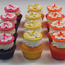 hisbiscuscupcakes